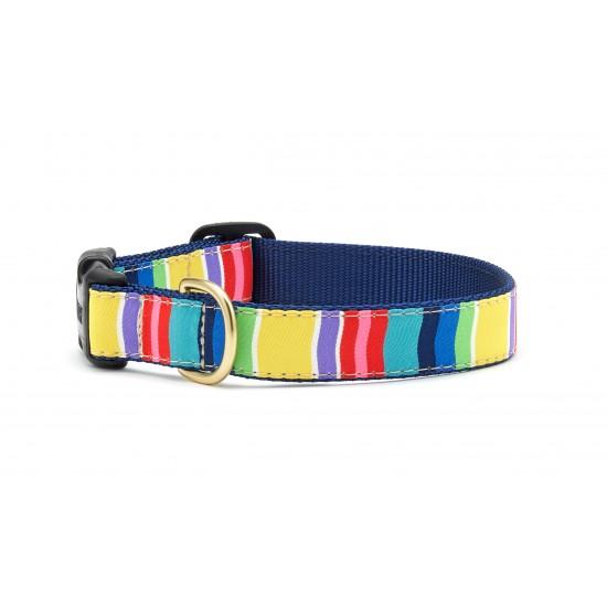 Colorful Stripe