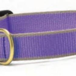 Purple & Gray