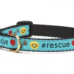 #Rescue Cat