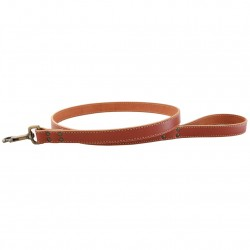 Lake Country Stitched Collar & Leash