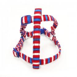 EasyCLICK Harness & Leash Fun Stripes