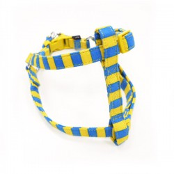 EasyCLICK Harness & Leash Stripes