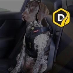 Drive Harness