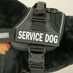 Patches for Convert Harness