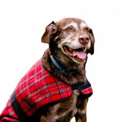 HuggleWear Jackets - Red & Gray Plaid