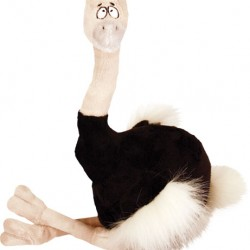 Fat Ostrich