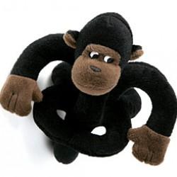 EE EEE Gorilla