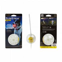 GlowStreak LED Ball