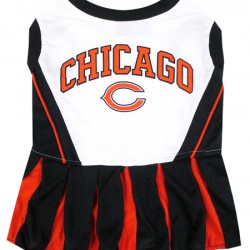 Chicago Bears Cheerleader Outfit