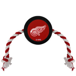 Detroit Red Wings Hockey Puck Toy