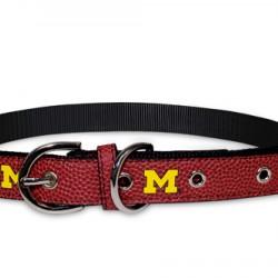 Michigan Wolverines Signature Collar