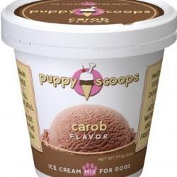 Ice Cream - Carob