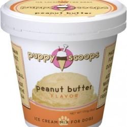 Ice Cream - Peanut Butter