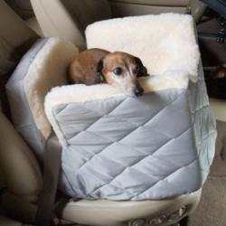 Lookout 1 Pet Car Seat