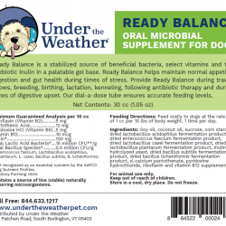 Ready Balance for Dogs
