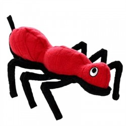 Ant - Rant