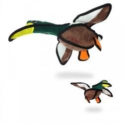 Duck - Dudley