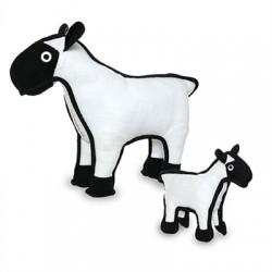 Sheep - Sherman
