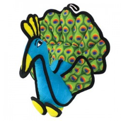 Peacock - Peyton