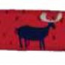 Elk Collar and Leash