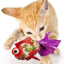 Crink-a-fish and Tenggo Squid Cat Toy